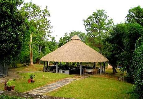 Jungle Lodges and Resorts in Dandeli  #resorts #dandeli #adventuretour
