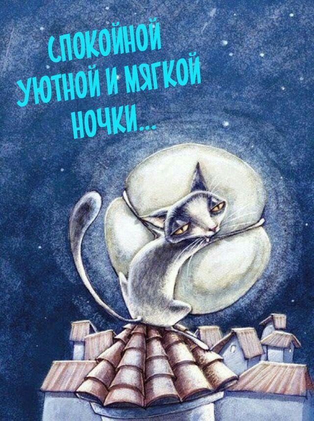 Юмористические открытки ночные