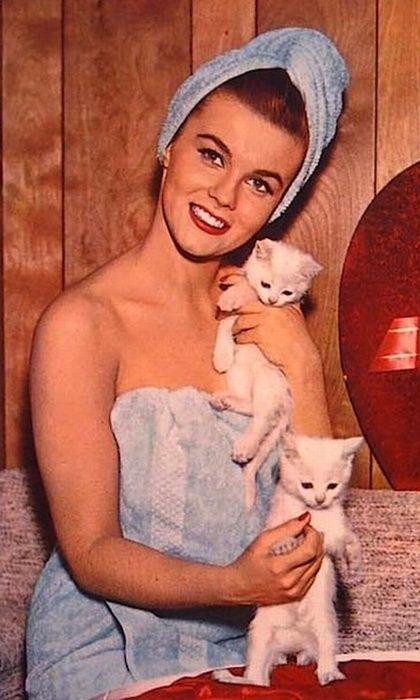 Ann Margaret <3s kitties