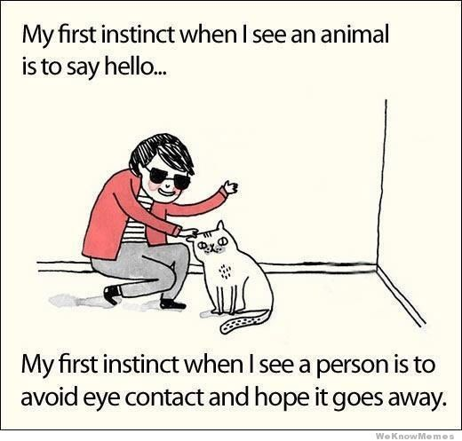 Funny Quotes About Animal Lovers : Things, Funny Cute Quotes, Funny Pictures, What S Funny, Yep Animals ...