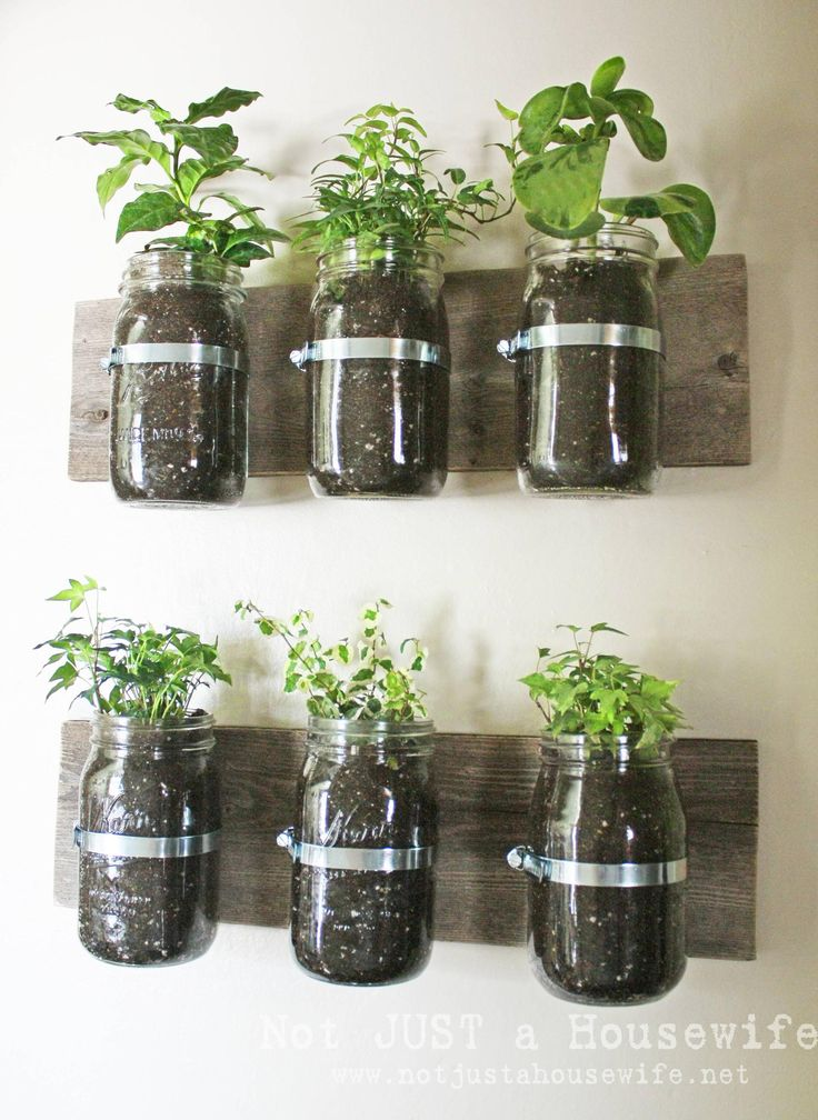 Kitchen herbs or could start plants for gaden in spring.  May use a peg board backing painted a great color.  Would be a lot less horizontal space!