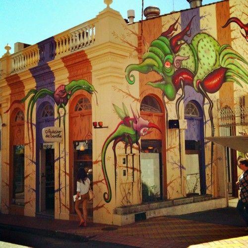 Padeiro de Sevilha, Floripa