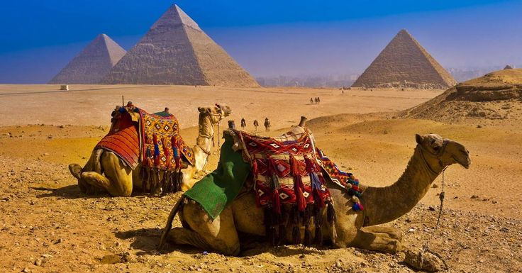 Si può tranquillamente definire un itinerario da sogno quello proposto dal luxury brand australianoScenic in Egitto nella sua programmazione 2018-2019: Treasures of Egypt, infatti, permetterà ai fortunati ospiti di scoprire le meraviglie