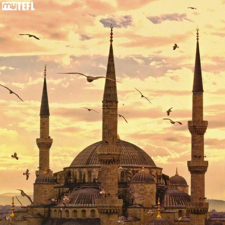 Majestic mosques, glimmering beaches, ancient cities, throbbing bazaars – what's not to love about #Turkey!? #Travel and teach there this 2017 with help from #myTEFL #Istanbul #Ankara #Travelers #TEFLlife #TESOL #getoutthere #explore #adventure #Europe #Asia #Turkishadventure #Bodrum #Van #Cappadocia #explore #getqualified #TEFLtravel