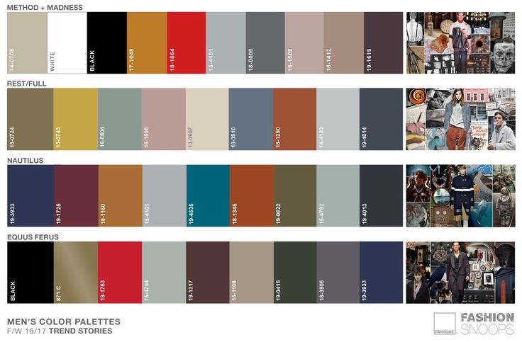 FW 16-17  //  STORY PALETTES