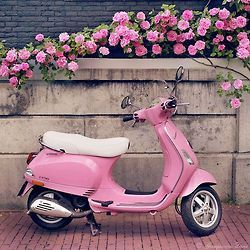 Pink vespa, Pink roses, Pink bricks....................