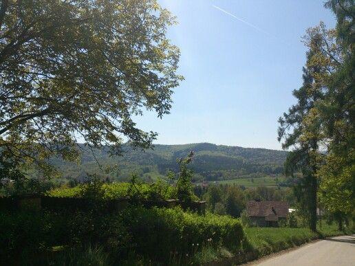 Widok ze wzgórza