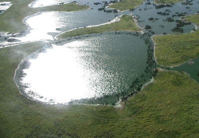 Mato Grosso do Sul - Conheça seu Estado (História e Geografia): 32 - Pantanal – Patrimônio Natural da Humanidade
