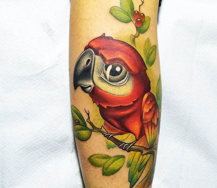 Parrot tattoo by Vincent Zattera