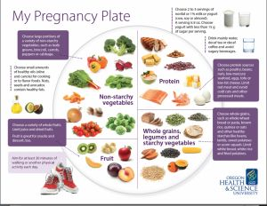 'My Pregnancy Plate': a blueprint for healthy eating during pregnancy | Healthy Families #pregnancy #moms