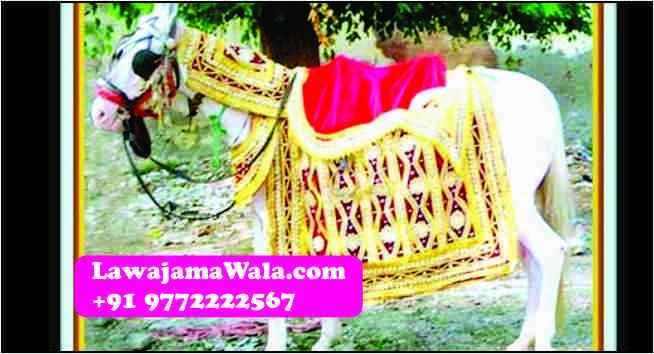 Wedding procession i.e. Wedding Band, Punjabi Dhol, Nagada, Chariot, Pagdi/Turbans/Safa, Mashal, Dulhan Doli Rental, Dandia Party, Ghori,