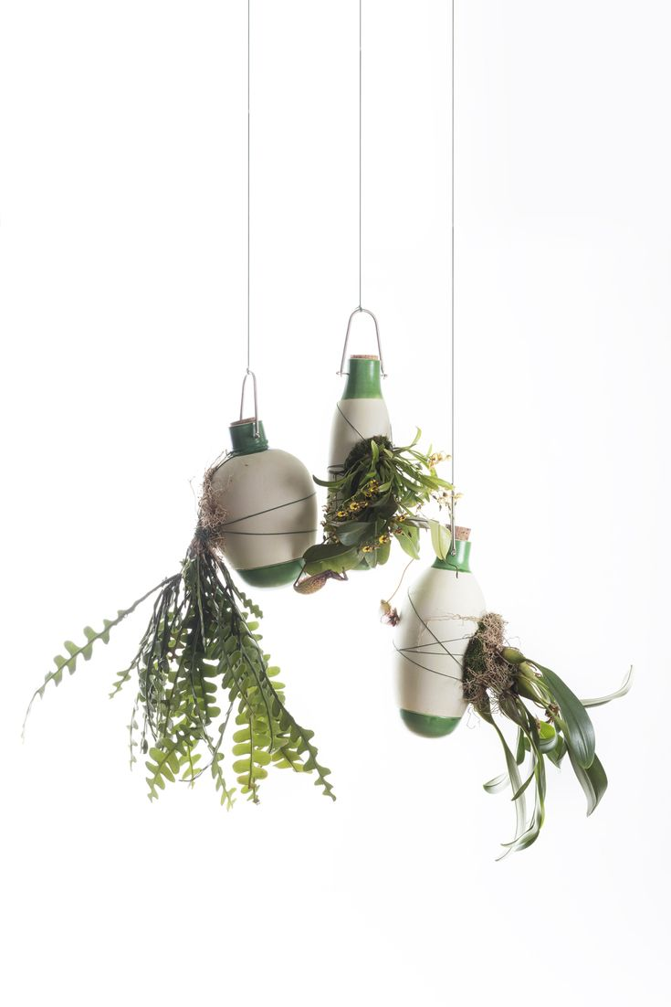 Epiphytes (Dossofiorito, 2015): a collection of suspended vases in white ceramic, offering an alternative to the potted cultivation of epiphytic houseplants, leaving on sight not only the plant aerial part but also its rootage. With this system, in fact, the plant roots are not contained in the vase, but they envelop it as they would do with a tree branch in the forest.