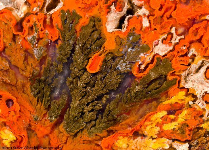 https://flic.kr/p/akzQ7R | Alpine Plume | Plume agate from Alpine, Texas