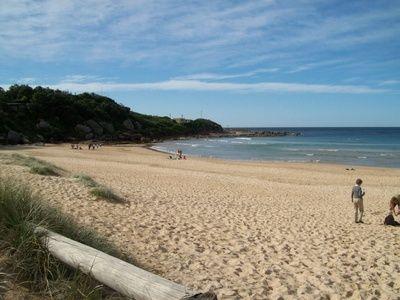 Freshwater Beach - KidTown Sydney