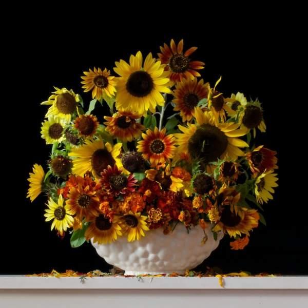 Sunflowers & Marigolds | Emma Bass