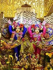 Sri Sri Gaur Nitai in their golden altar @ISKCONPune