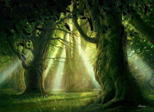 traverse la forêt enchantée et le royaume des fées