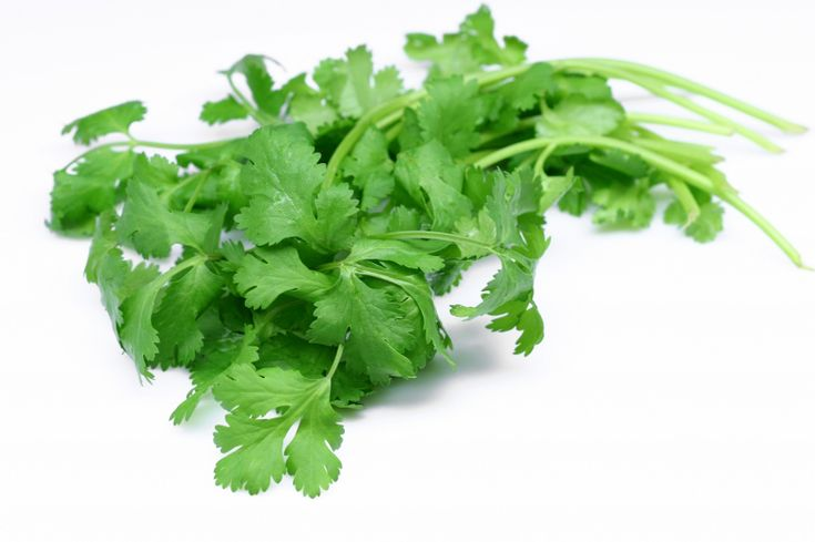Coriander leaves (Cilantro) paste for insomnia 10 gm of coriander leaves are cleaned well and made into a paste.When this is eaten before bedtime the person will be able to sleep well.This also helps in digestion.