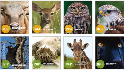 favorite animal personality test