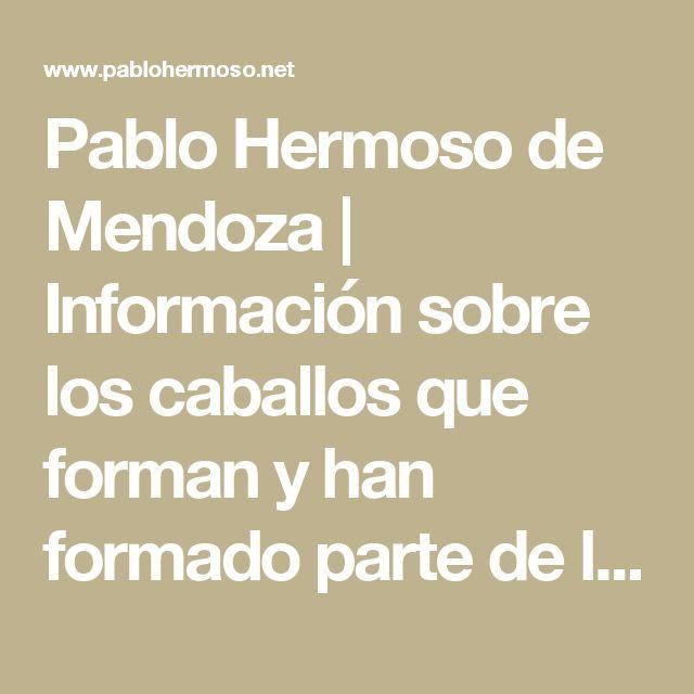 Pablo Hermoso de Mendoza | Información sobre los caballos que forman y han formado parte de la cuadra de Pablo Hermoso de Mendoza