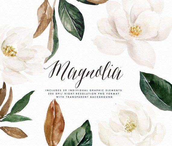 Watercolor Flower Clip Art Magnolia Elements Small Etsy In 2020 Flower Clipart Watercolor Flowers Watercolor Flower Wreath
