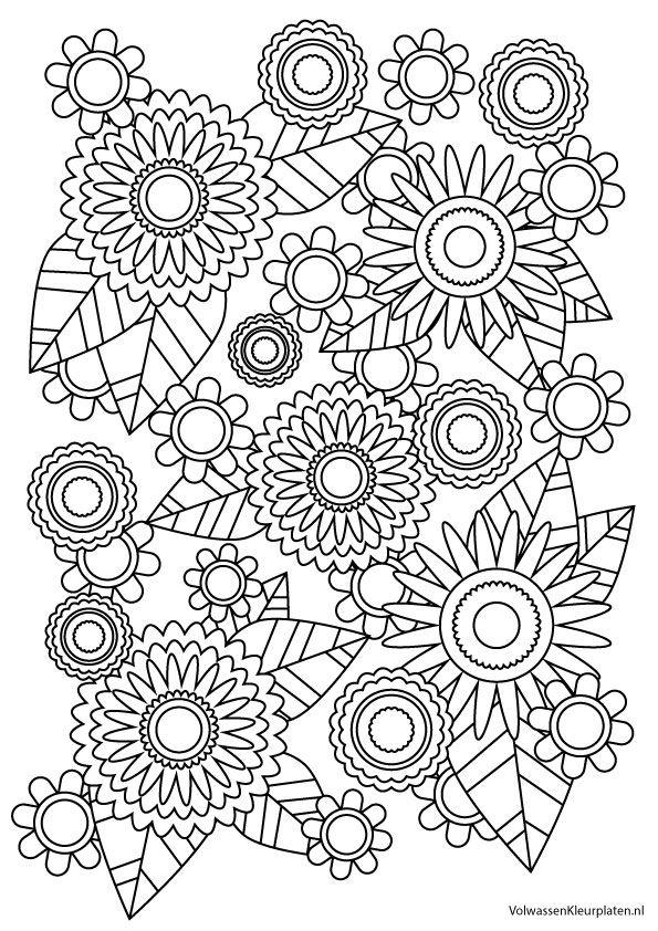 Volwassen kleurplaat bloem 1 | Volwassen kleurplaten