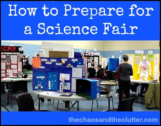 all science fair projects com Compete instructions on how to do a science fair project and set up a  all of the  projects below are original ideas done by my own children.