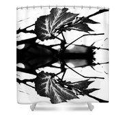 Leaves Monochrom V2 Shower Curtain by #PiaSchneider, #artwork #showercurtains #bathroom #badezimmer #duschvorhang #decoration #blackandwhite #nature #monochrom #elegant #modern #home #giftideas #fineartamerica