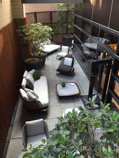 グリーンと家具で、くつろぎのアウトドアリビングに   モダンリビング編集長下田結花「インテリアの小さなアイデア」   mi-mollet(ミモレ)   講談社