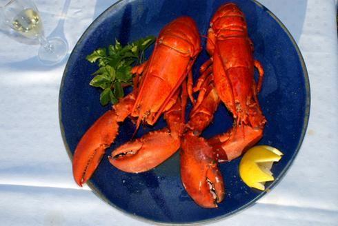 MMMmmm les homards, Îles de la Madeleine
