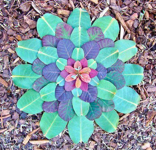 extraordinary designs by kathy klein, like nature's kaleidoscope