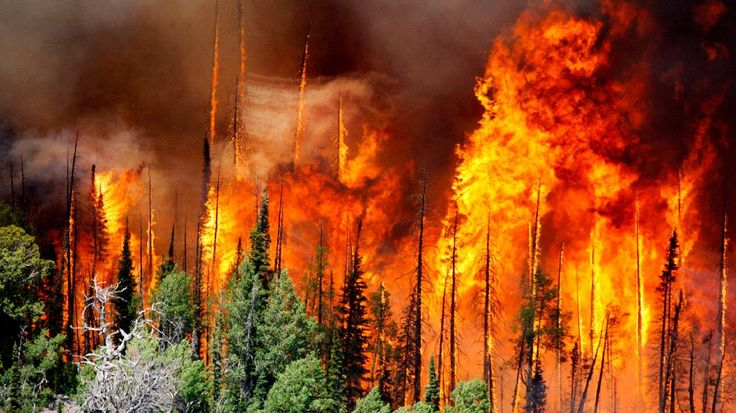 6/17/3017. UTAH: Utah's Brian Head Fire Now Largest Active Wildfire in US with 13 Homes Burned.  More than 1,500 people have been chased from their homes by the fire.  The Weather Channel.