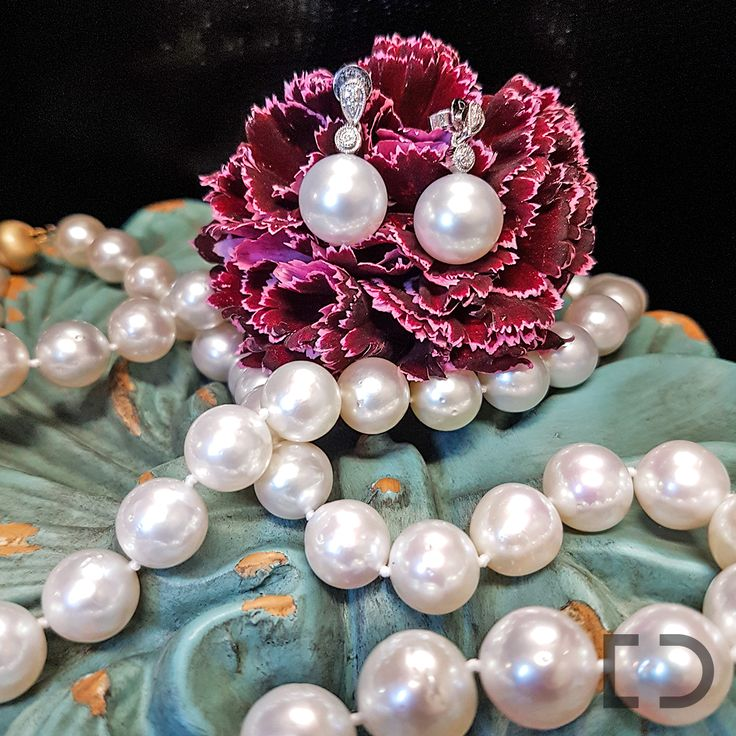   A Living Gem   Did you know that pearls are the only gemstones in the world which are produced by living creatures? They come in many different sizes, colours and shapes. Come in store to see our stunning pearl jewellery. We'll help you find your next favourite accessory. #DuffsJewellers #Pearls