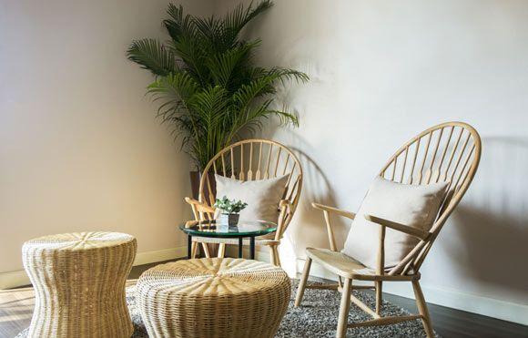 Confira as sugestões de plantas da arquiteta Thais Lacialamella para cada tipo de ambiente