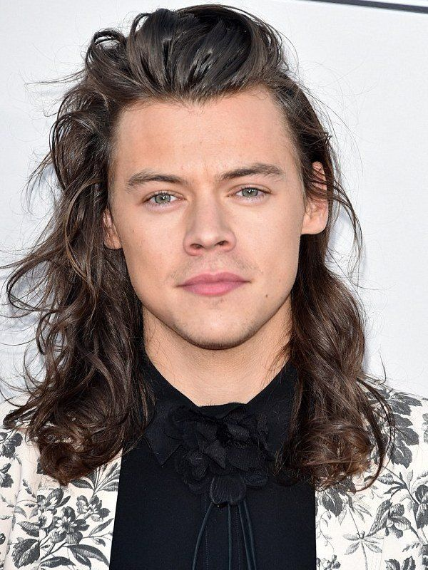 Compare Harry Styles Height Weight Eyes Hair Color With Other Harry Styles Long Hair Long Hair Styles Harry Styles Eyes