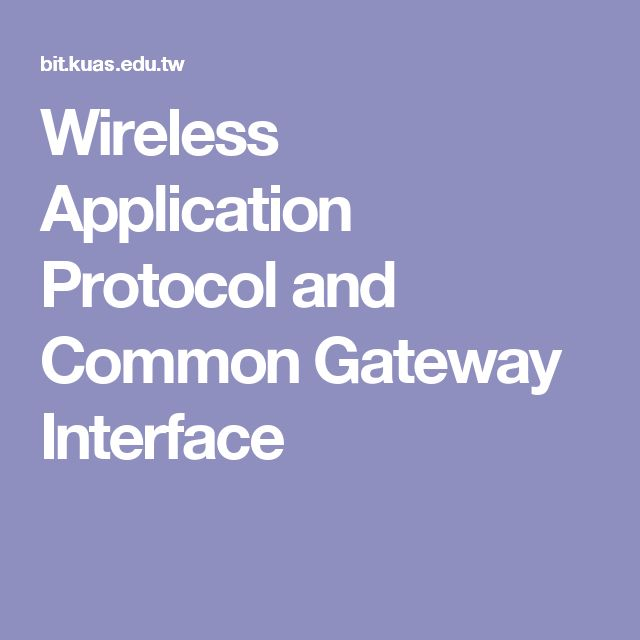 Wireless Application Protocol and Common Gateway Interface