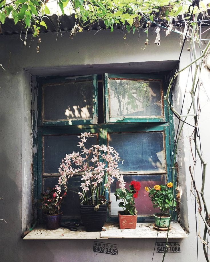 #happy #weekend #yay #windows #hutong #decorating #flowers are #best #beijing #china #street #mobilephotography #fromwhereistand #igersbeijing #igdaily #instabeijing #travel #explore #everyday #art