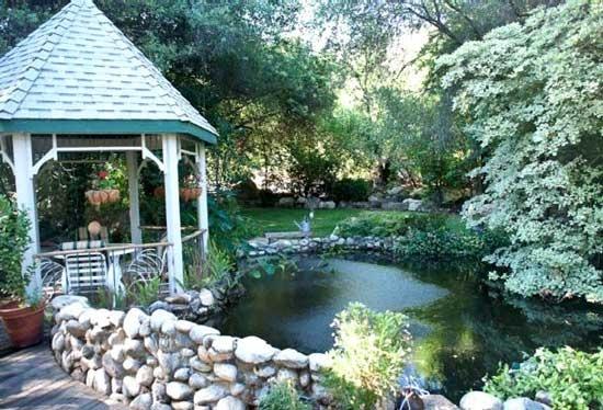 74 best ponds images on pinterest koi ponds backyard for Scott and white fish pond