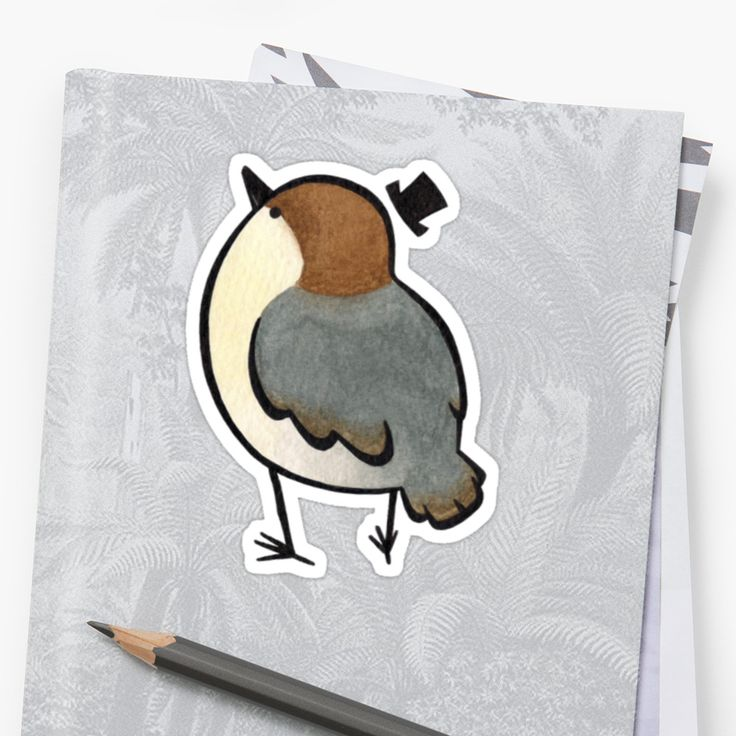 A recent revamp of an old idea of mine. What a dapper little nuthatch! • Also buy this artwork on stickers and stationery.