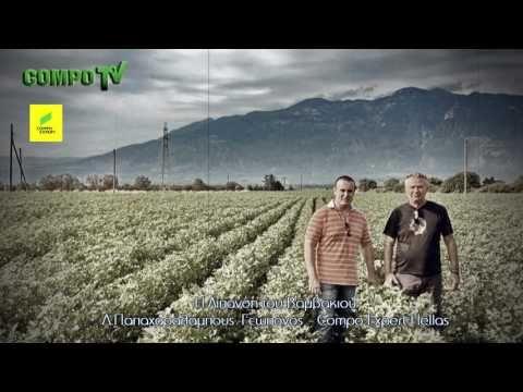 Βαμβάκι - Ολοκληρωμένη Θρέψη από την COMPO EXPERT Hellas - YouTube