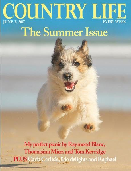 Country Life Magazine Subscription | Buy at Magazine Café - Single Issue & Subscription Specialist in USA