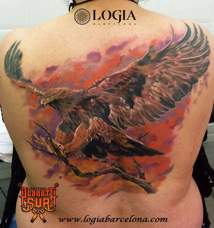 Φ Artist ÁNGEL DE MAYO Φ Info & Citas: (+34) 93 2506168 - Email: Info@logiabarcelo... www.logiabarcelon... #logiabarcelona #logiatattoo #tatuajes #tattoo #tattooink #tattoolife #tattoospain #tattooworld #tattoobarcelona #tattooistartmag #tattoosenbarcelona #ink #arttattoo #artisttattoo #inked #inktattoo #tattoocolor #aguila #eagle #tattooartwork #realismo