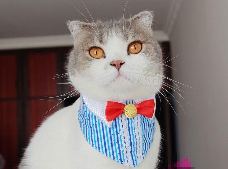 Aliexpress.com: Compre Lenço gato, Pet lenço, Cat Tie de confiança tracker empate fornecedores em 12 Years a Kitten Slave