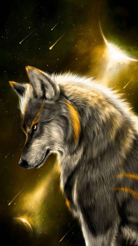 Papel De Parede De Lobo