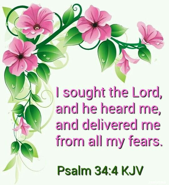 Psalms 34:4   I sought the Lord , and he heard me, and delivered me from all my fears.