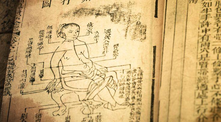 Čínská medicína znala GOJI (goudží) již před 5000 lety