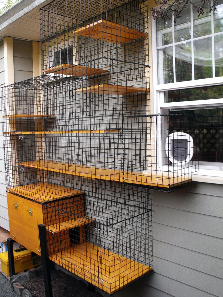 Enclosed litter box in an outdoor cat enclosure Beautiful World Living Environments www.abeautifulwor...