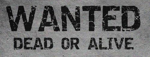 PRESS PLAY ► Bon Jovi -  Wanted Dead Or Alive lyrics