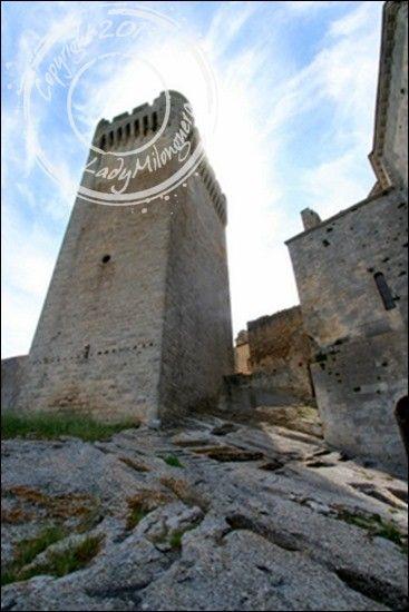 Abbaye-Montmajour-Arles (23)
