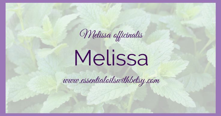 doTERRA Melissa essential oil has a multitude of wonderful uses and applications. Click here to read about Melissa (Lemon Balm) essential oil. Includes PDF.